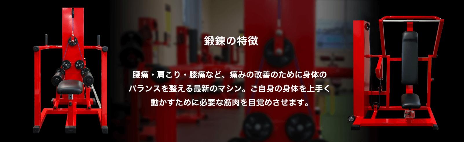 鍛錬の特徴 腰痛・肩こり・膝痛など、痛みの改善のために身体のバランスを整える最新のマシン。ご自身の身体を上手く動かすために必要な筋肉を目覚めさせます。