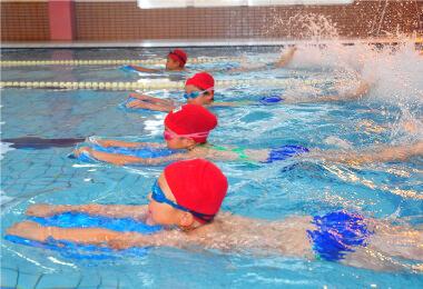 確かな泳力が身に付く指導